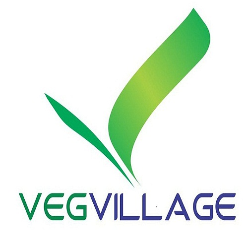 vegvillage.in